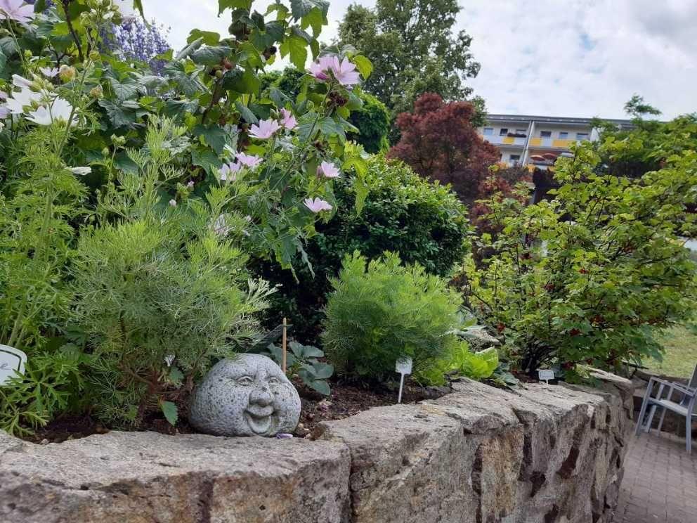 Gartengruppe_HDG_6@ASB_Dresden_und_Kamenz.jpg